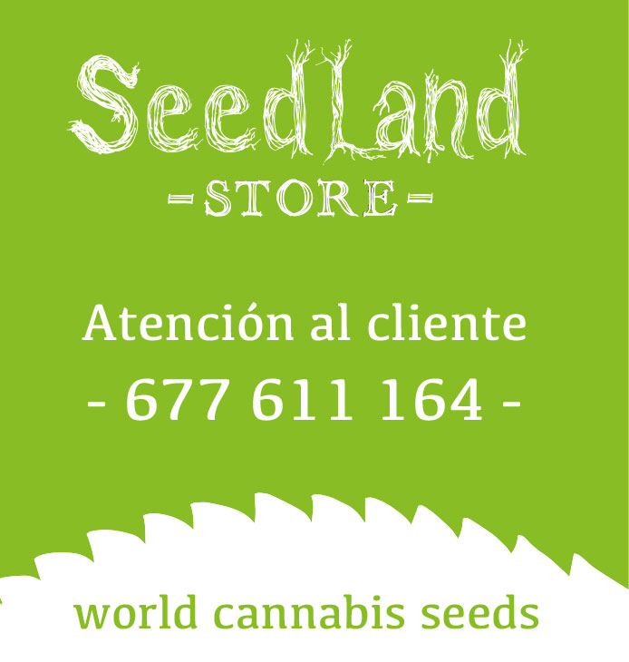 World Cannabis Seeds
